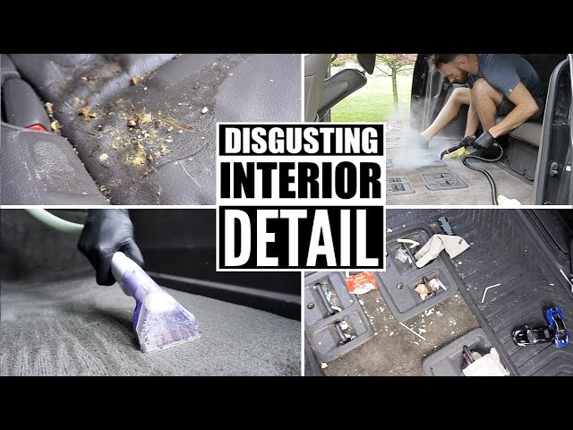 Complete Disaster Full Interior Car Detailing! Cleaning A Honda Odyssey Minivan