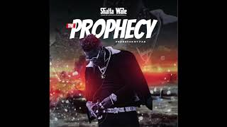Shatta Wale - The Prophecy (Audio Slide)