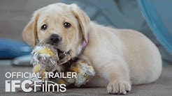 Pick of the Litter - Official Trailer I HD | IFC Films