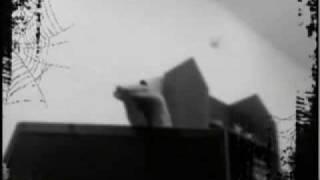 Новый(высокобюджетный) клип Nightwish