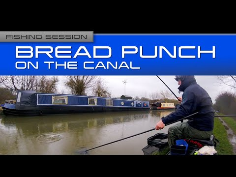 Fishing Session: Bread Punch On The Canal