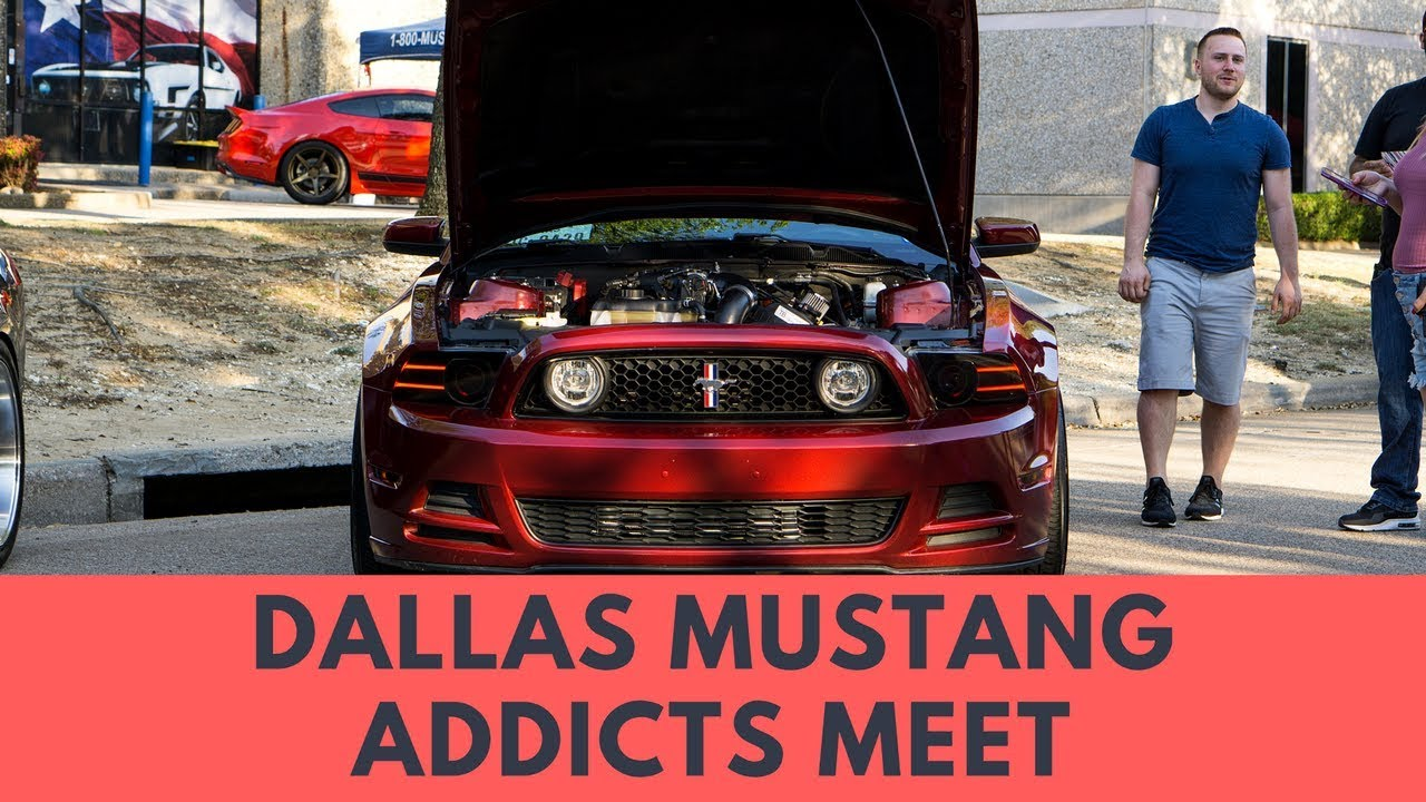 Mustang addicts meet at dallas mustang