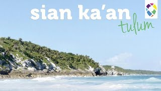 It's Hard To Say Goodbye | Sian Ka'an Biosphere Tulum - Ep. 020