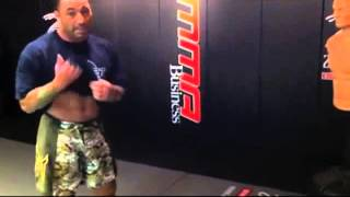 Joe Rogan's insane kicks