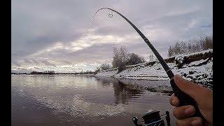 Я ДУМАЛ ЭТО КОРЯГА.....А ЭТО РЫБА!!! Рыбалка на реке Кеть!