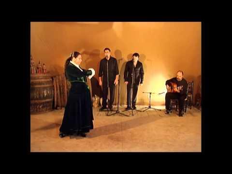 Baile Flamenco Volumen 2 parte 3garrotinmartinetetangosrondeñatarantoszorongo
