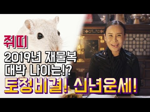 쥐띠 2019년 나이별 신년운세 금전과 재물복이 대박인 쥐띠 나이는!? (일산 용한점집 꽃대신당)