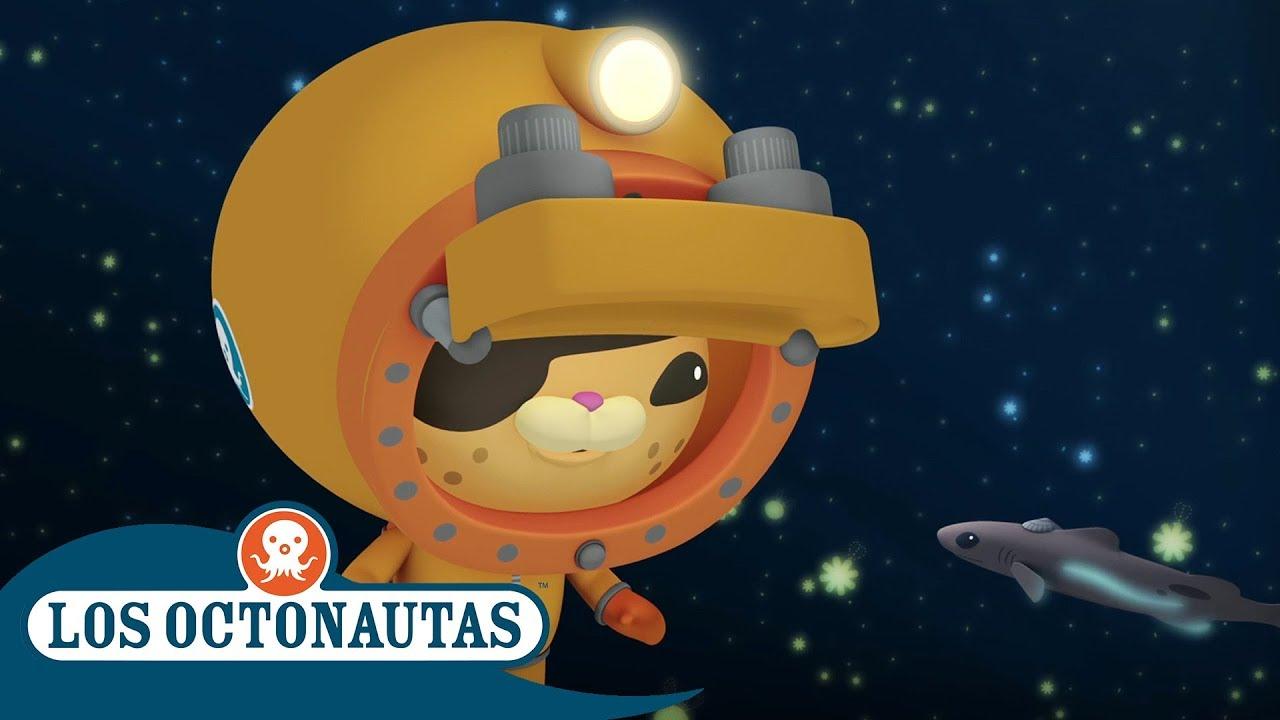 Los Octonautas Oficial en Español - Aventuras submarinas   Compilación
