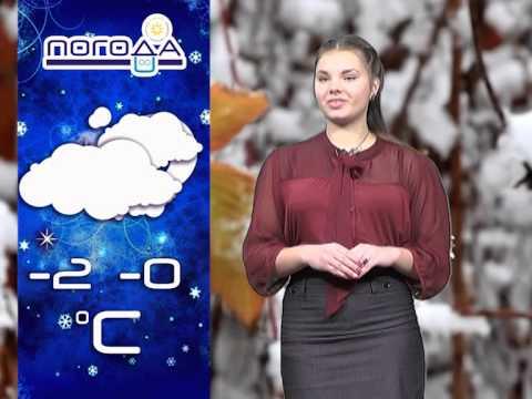 Погода в бобруйске на январь 2017