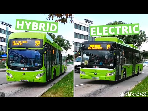 [SBST / G-AS] Diesel-Electric Hybrid & 100% Electric Bus calling at a Bus Stop