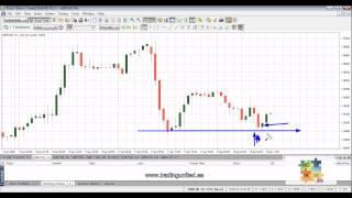 cours Forex best