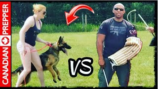 I Got a New Warrior German Shepherd! Heres Why Preppers Need Dogs