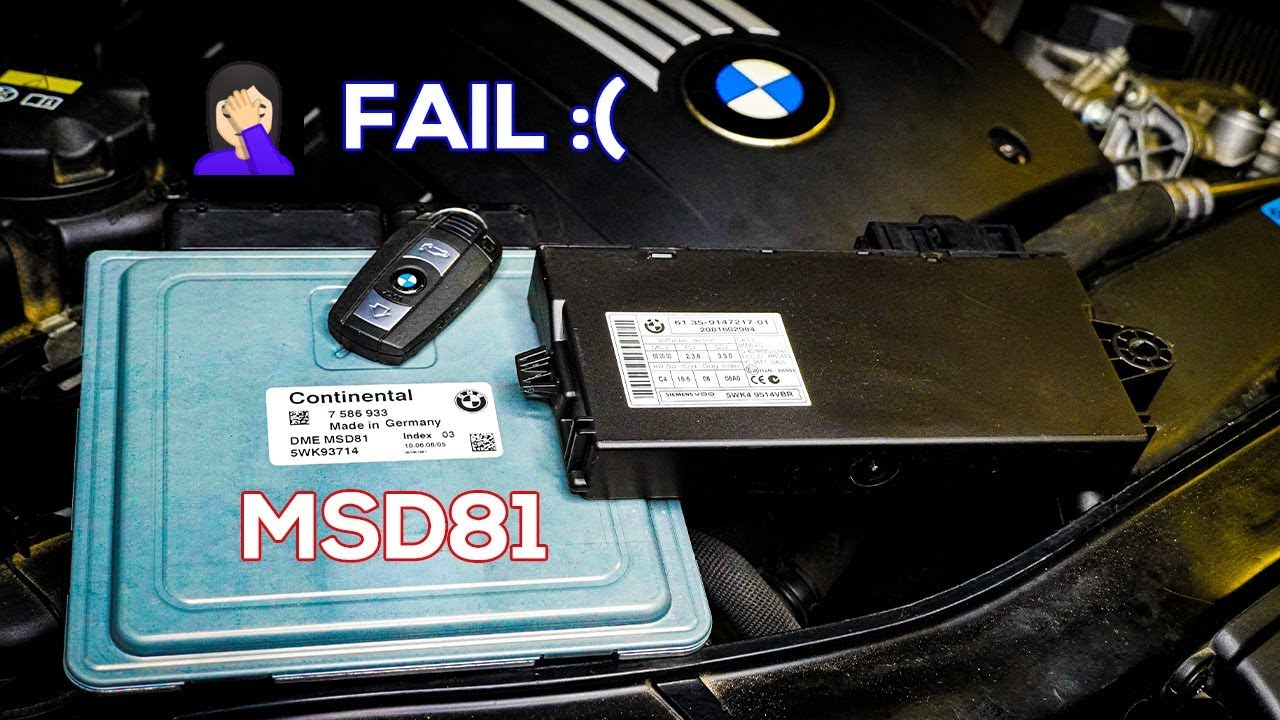 I Almost Ruined My BMW Trying This Update :( ECU Upgrade Attempt