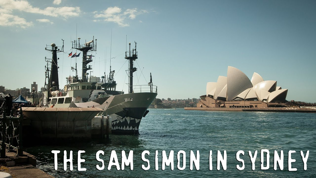 Sam simon ship