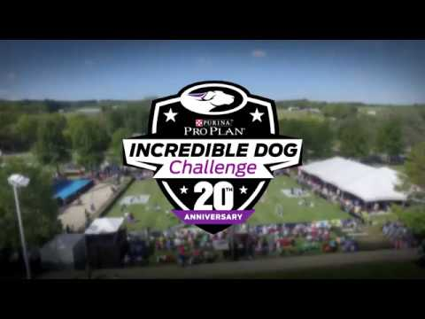 Celebrating 20 Years of the Purina® Pro Plan® Incredible Dog Challenge®