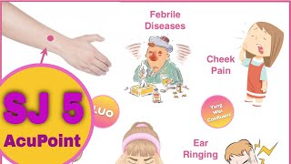 sj 5 acupuncture point
