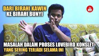 Download lagu DARI BIRAHI KAWIN KE BIRAHI BUNYI | PROSES PENGGACORAN BAHAN LOVEBIRD KONSLET OM NOVI BANJARNEGARA