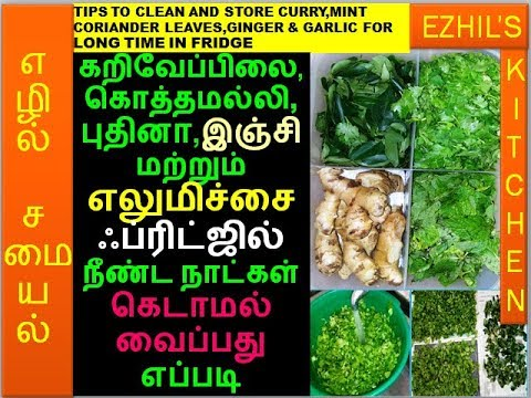 TIPS TO CLEAN & STORE CURRY,CORIANDER,MINT LEAVES,GINGER & LEMON FOR LONGTIME IN FRIDGE/ONE BOX IDEA
