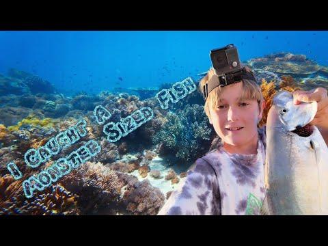Monster Fish Caught!!! Forster Fishing!!