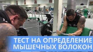 видео Типы мышечных волокон