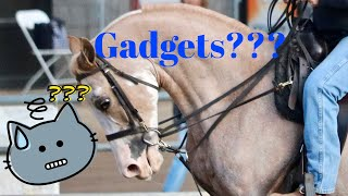 Training horses with gadgets
