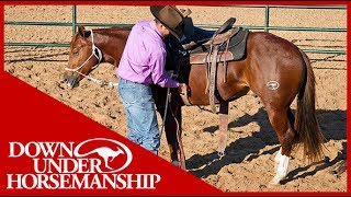 Clinton Anderson: An Overview of Starting a Colt  Downunder Horsemanship