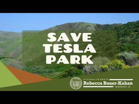 Tesla Park
