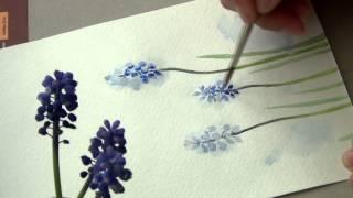 как нарисовать цветок мускари акварелью/DIY. Spring flowers. Botanical paintings