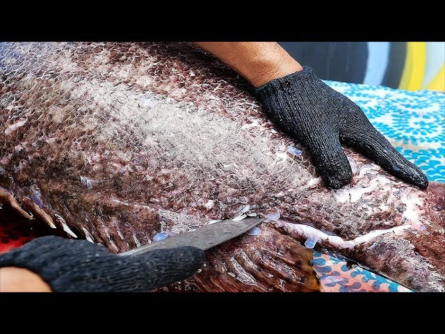 Thai Street Food - $1500 GIANT GROUPER Bangkok Seafood Thailand