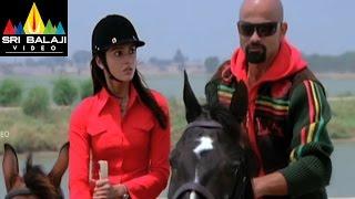 Aata Movie Horse Raiding Comedy Scene   Siddharth, Ileana   Sri Balaji Video