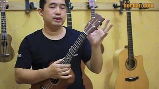 Học đàn Ukulele Bài 1 - Giới thiệu về đàn Ukulele