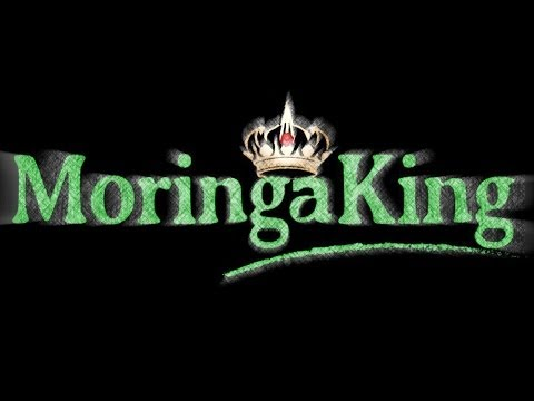Why Moringa King™ Is Best - PROCESSING PROTOCOL at PlottPalmTrees.Com