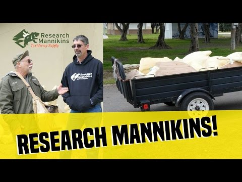 Research Mannikins - CAT Show 2017!