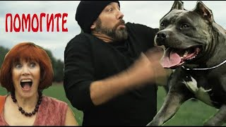 """Самооборона для бабушки - Урок 3 """"Собаки"""" (Частные уроки Мастера Кена)"""