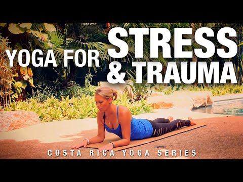 Yoga for Stress & Trauma Class - Five Parks Yoga