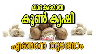 How to start mashroom farming malayalam / low investment business