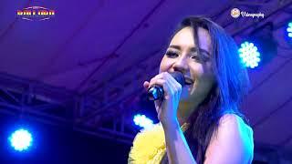 Tirai Cinta - Lala Widi NEW PALLAPA  Live Muarareja Tegal