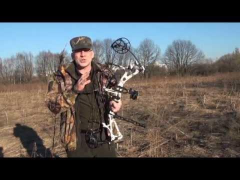 Стрельба из охотничьего лука на 80 метров Bear Motive-6, пристрелка прицела SmartPin React