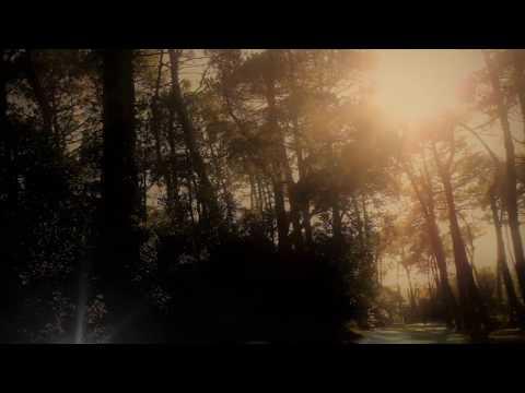 Peter Schreier: 9 Lieder by Schubert