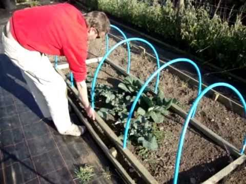 How To Make A Portable Netted Hooped Crop & Plant Protecting