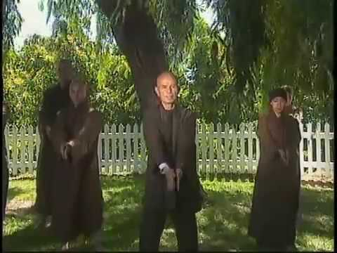 Thich Nhat Hanh- Mindful Movements