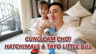 Cùng Cam chơi trứng Hatchimals & Tayo Little Bus | Gia Đình Cam Cam Vlog 91