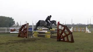 конный спорт приколы