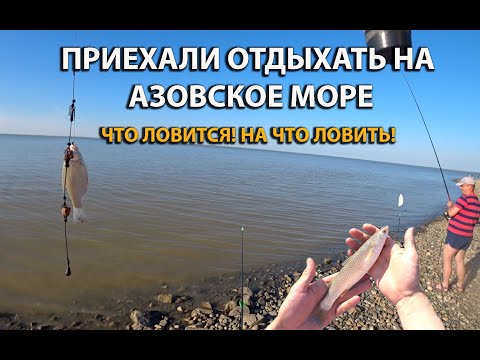 Что можно поймать на Азовском море во время отдыха! Рыбалка на море! Что для этого нужно!