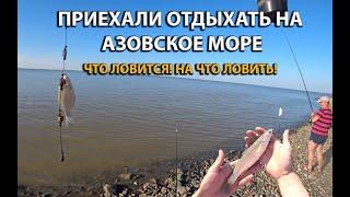 Что можно поймать на Азовском море во время отдыха Рыбалка на море Что для этого нужно