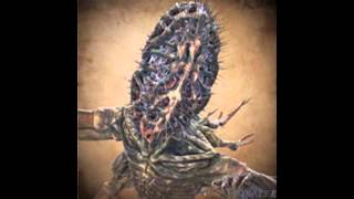 Bloodborne OST - Amygdala - Extended