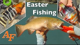 New Samaki Zing & Easter Bait fishing Andy