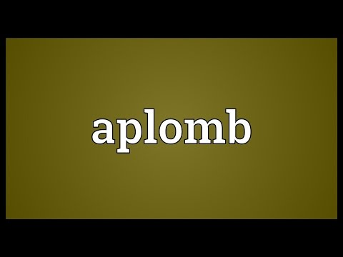 Aplomb Meaning