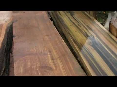 Salvaging Urban Timber with Viable Lumber