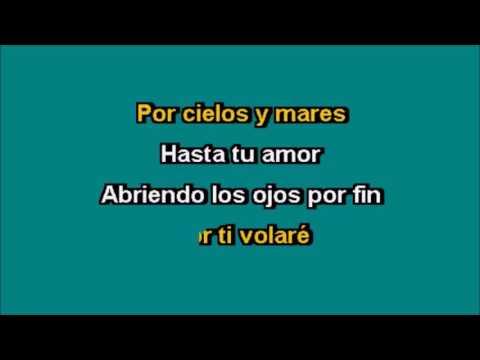 Efrain Saracho - Karaoke   Por Ti Volare